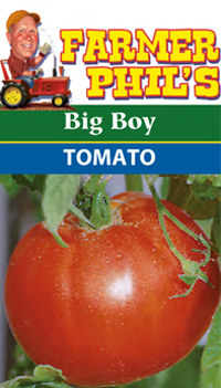 big boy tomato farmer phil s tomato varieties plant for success 29415